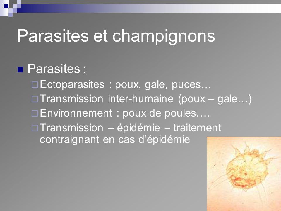 Parasites et champignons Parasites : Ectoparasites : poux, gale, puces… Transmission inter-humaine (poux – gale…) Environnement : poux de poules…. Tra