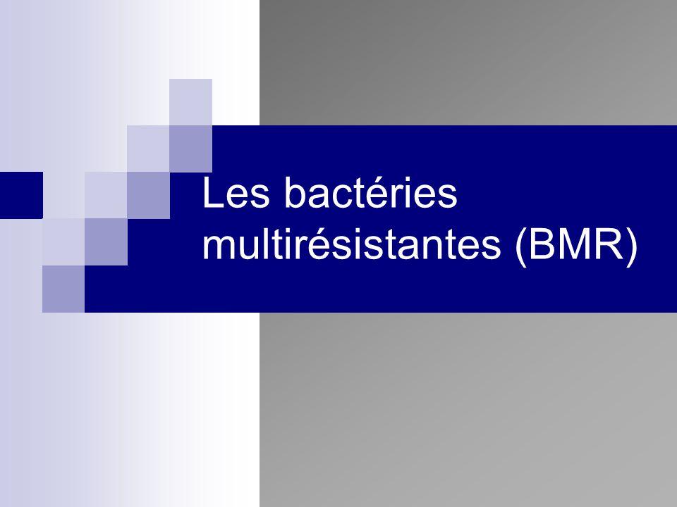 Les bactéries multirésistantes (BMR)
