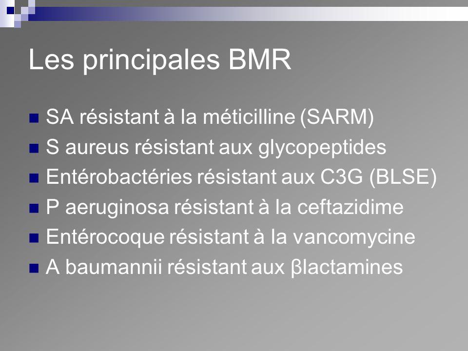 Les principales BMR SA résistant à la méticilline (SARM) S aureus résistant aux glycopeptides Entérobactéries résistant aux C3G (BLSE) P aeruginosa ré