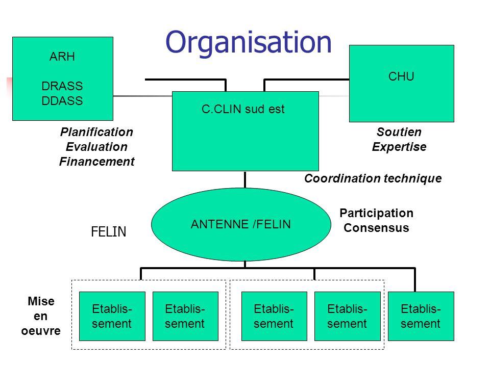 Organisation C.CLIN sud est ARH DRASS DDASS CHU Etablis- sement Etablis- sement Etablis- sement Etablis- sement Etablis- sement ANTENNE /FELIN Planifi