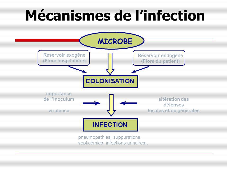 LE PLAN EPIDEMIOLOGIE DEFINITIONS Infection-infection nosocomiale-IAS-colonisation MECANISME DE L INFECTION Les germes en causes- BMR PREVENTION Précautions standard-précautions complémentaires PROTOCOLES DE SOINS selon le risque infectieux