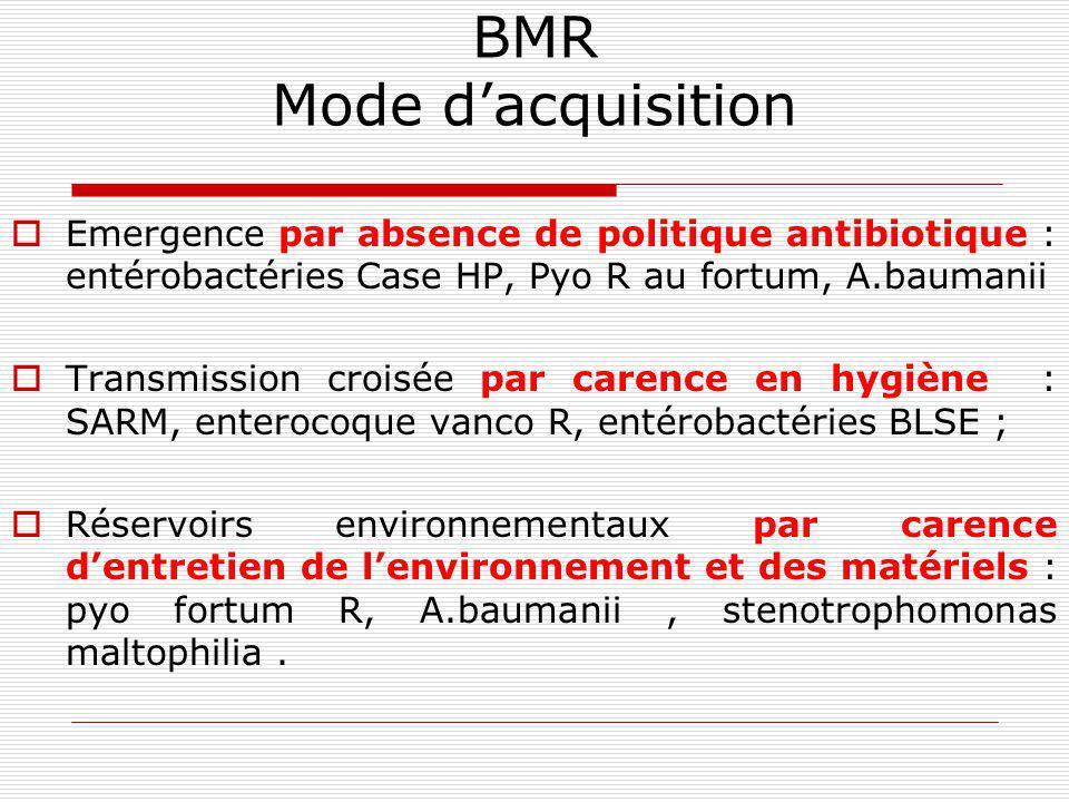 BMR Durée dhospitalisation – nbses hospitalisations, Densité des soins, Ratio personnel /patients ( périodes de vacances…), Carence en formation (nouv