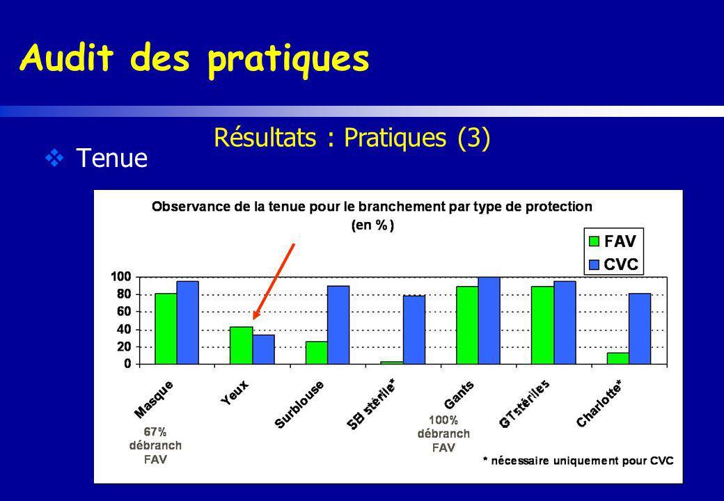 Audit des pratiques Tenue Résultats : Pratiques (3)