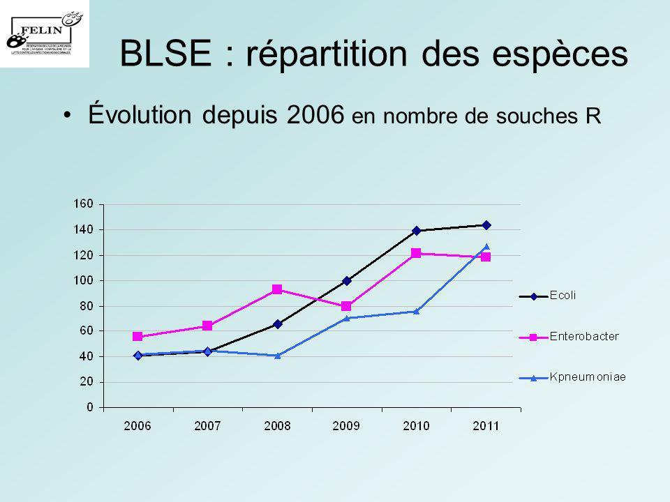BLSE : répartition des espèces Évolution depuis 2006 en nombre de souches R