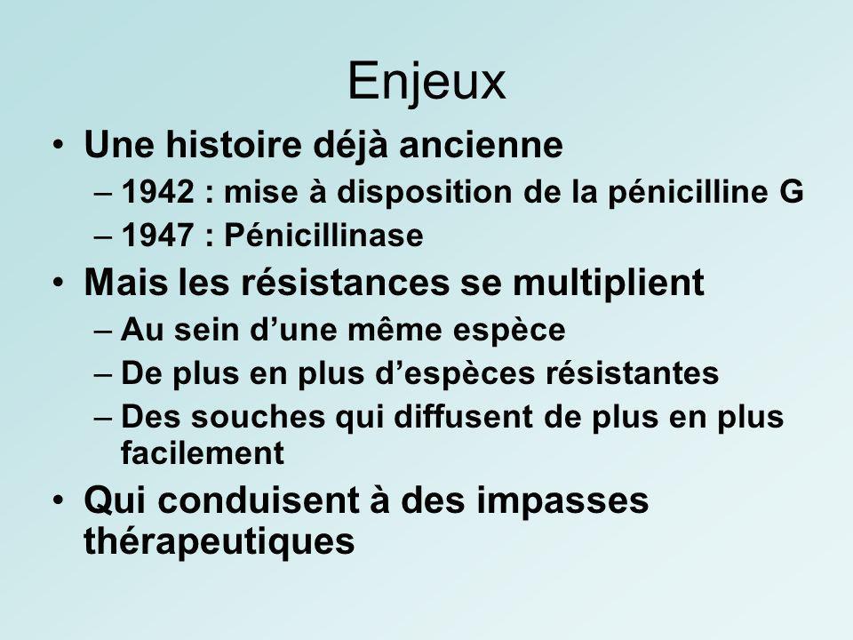 Enjeux Une histoire déjà ancienne –1942 : mise à disposition de la pénicilline G –1947 : Pénicillinase Mais les résistances se multiplient –Au sein du