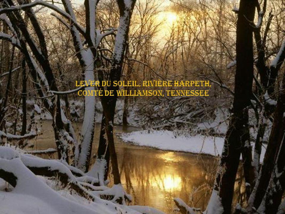 Ruisseau Vaughn, Parc Edwin warner, Nashville, Tennessee