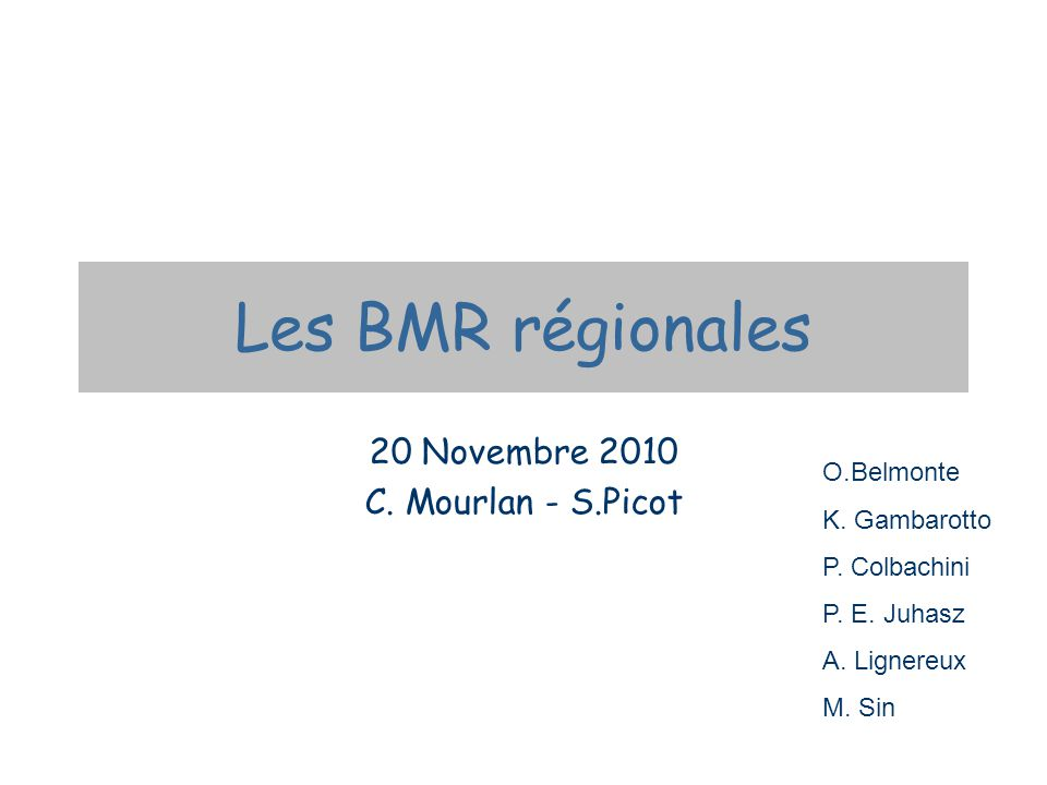 Les BMR régionales 20 Novembre 2010 C. Mourlan - S.Picot O.Belmonte K.