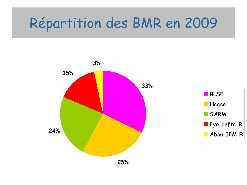 Répartition des BMR en 2009
