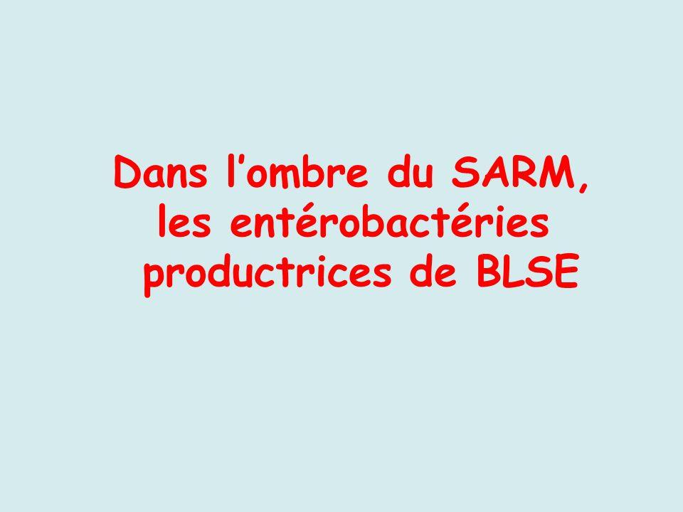 Dans lombre du SARM, les entérobactéries productrices de BLSE