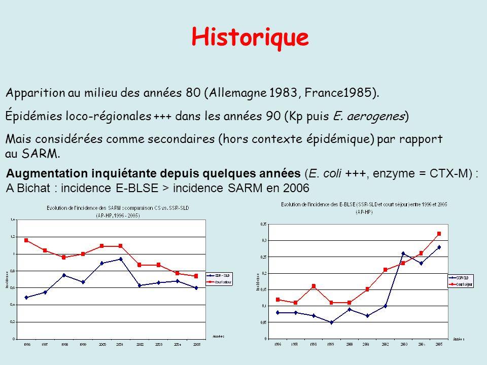 Apparition au milieu des années 80 (Allemagne 1983, France1985). Épidémies loco-régionales +++ dans les années 90 (Kp puis E. aerogenes) Mais considér