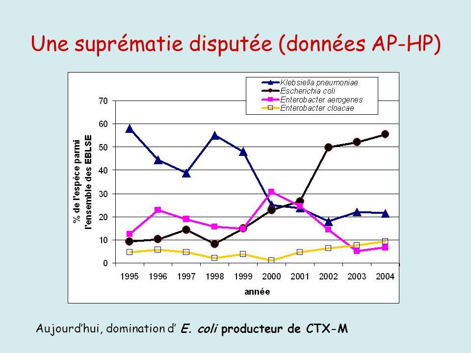 Une suprématie disputée (données AP-HP) Aujourdhui, domination d E. coli producteur de CTX-M