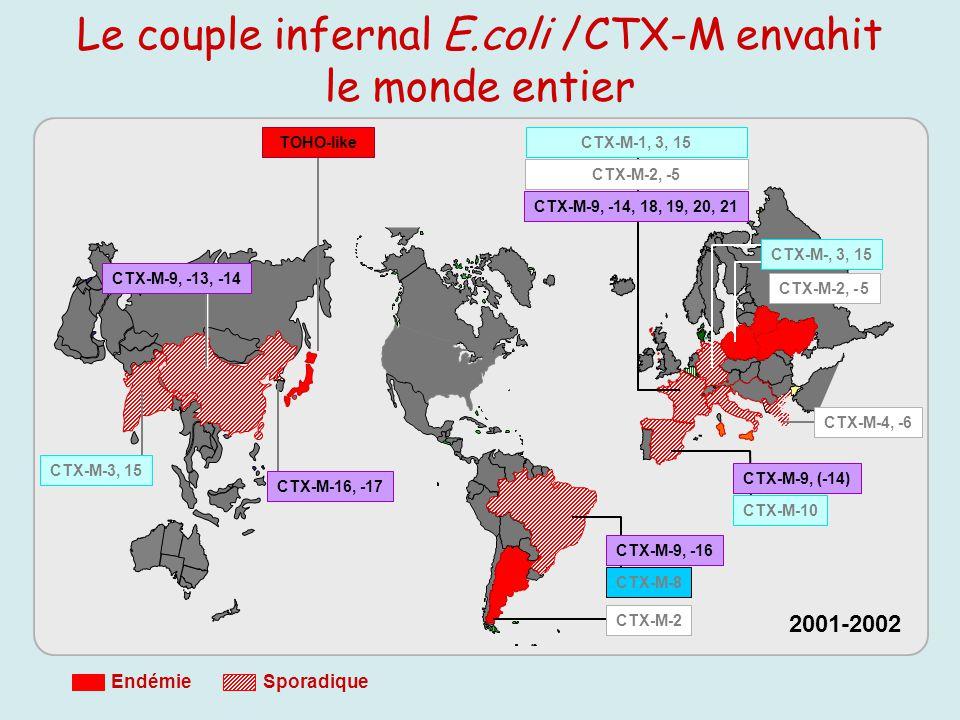 Le couple infernal E.coli /CTX-M envahit le monde entier 2001-2002 CTX-M-4, -6 CTX-M-2, - 5 CTX-M-3, 15 CTX-M-9, -13, -14 CTX-M-16, -17 TOHO-like CTX-