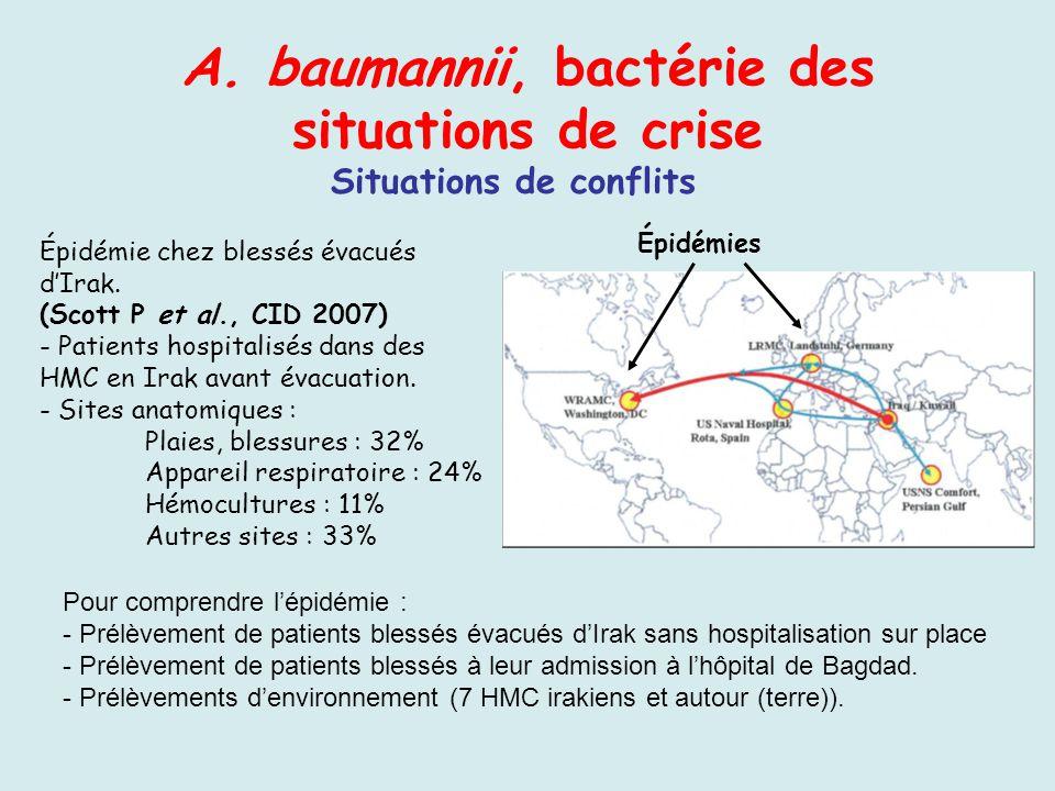 A. baumannii, bactérie des situations de crise Situations de conflits Épidémie chez blessés évacués dIrak. (Scott P et al., CID 2007) - Patients hospi