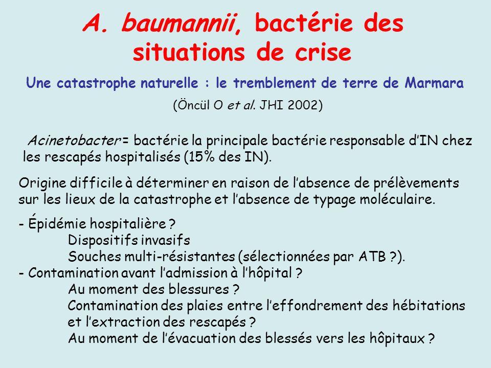 A. baumannii, bactérie des situations de crise Une catastrophe naturelle : le tremblement de terre de Marmara Acinetobacter = bactérie la principale b