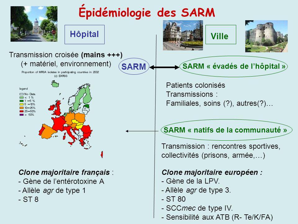 Épidémiologie des SARM Hôpital Transmission croisée (mains +++) (+ matériel, environnement) Clone majoritaire français : - Gène de lentérotoxine A - A
