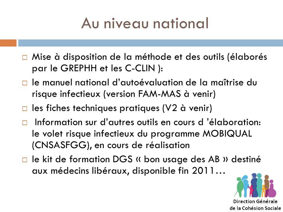Au niveau national Mise à disposition de la méthode et des outils (élaborés par le GREPHH et les C-CLIN ): le manuel national dautoévaluation de la ma