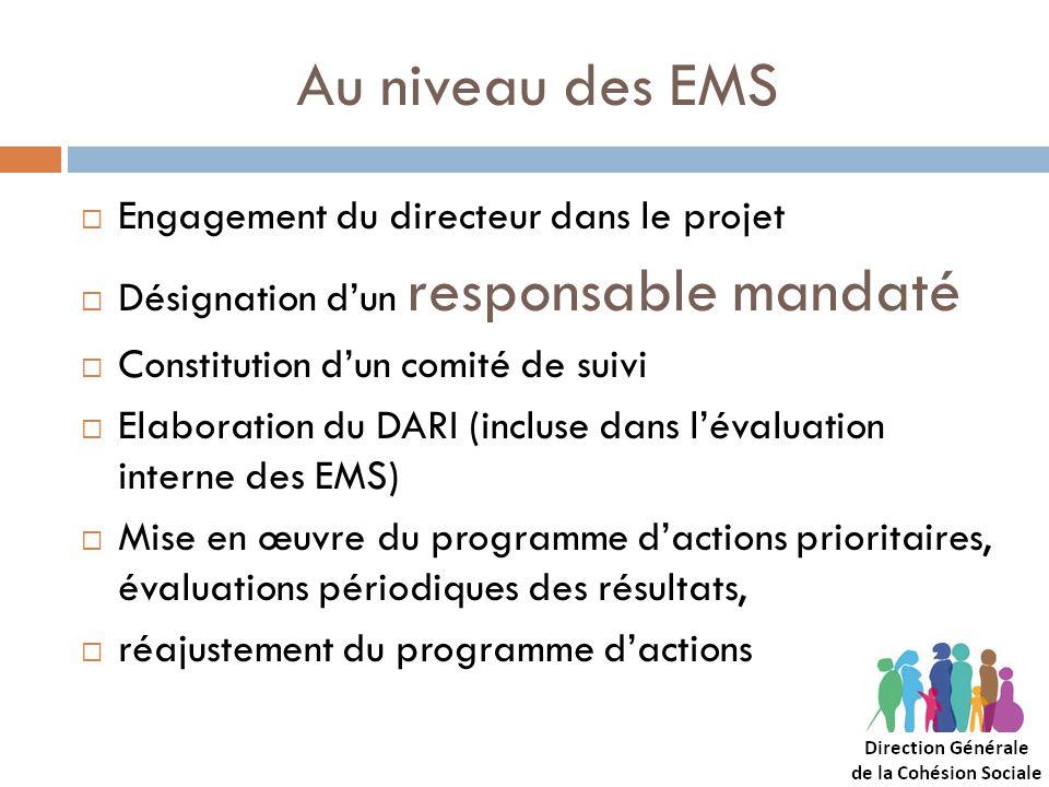 Au niveau des EMS Engagement du directeur dans le projet Désignation dun responsable mandaté Constitution dun comité de suivi Elaboration du DARI (inc