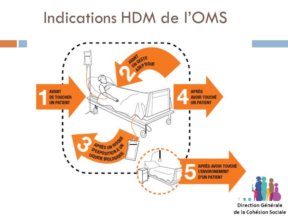 Indications HDM de lOMS