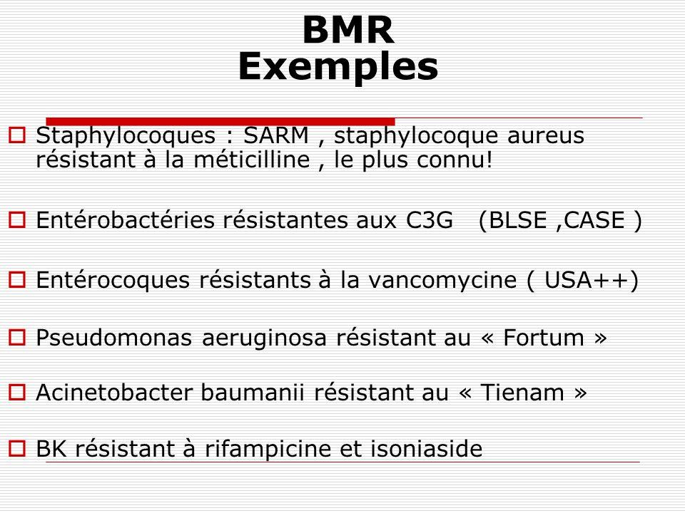 Résistance acquise acquisition de résistance chez certaines souches au sein dune espèce bactérienne sensible Résulte dune modification génétique : * mutation * plasmide Définit des phénotypes « résistants »(par opposition au phénotype « sauvage ») = Conséquence de la pression de sélection des ATB