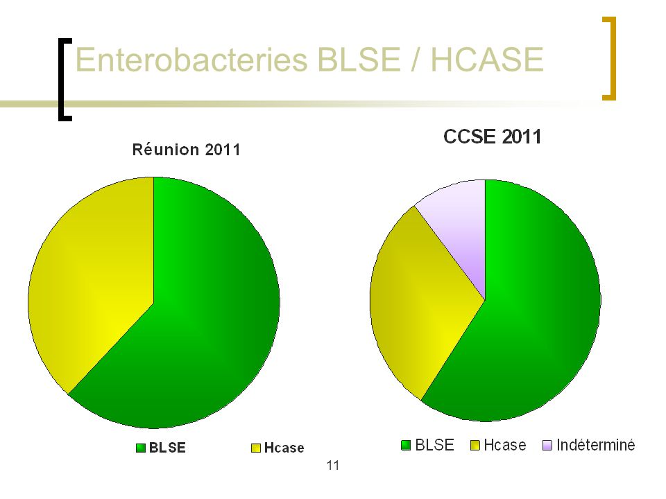 11 Enterobacteries BLSE / HCASE