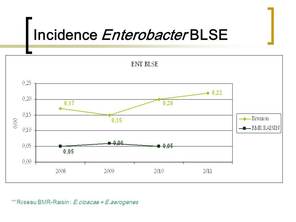 Incidence Enterobacter BLSE ** R é seau BMR-Raisin : E.cloacae + E.aerogenes