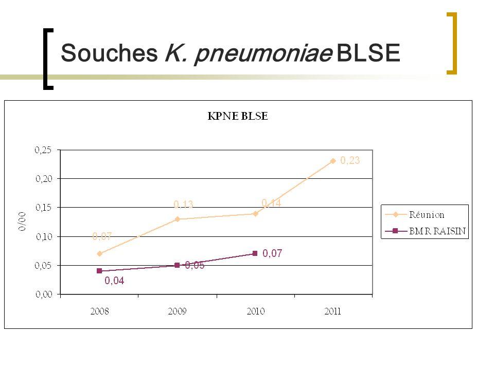 Souches K. pneumoniae BLSE