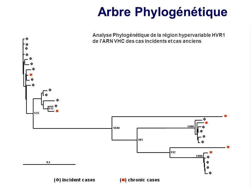Arbre Phylogénétique Analyse Phylogénétique de la région hypervariable HVR1 de l'ARN VHC des cas incidents et cas anciens