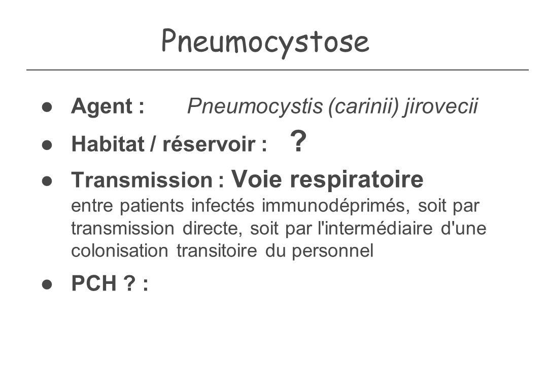 Pneumocystose Agent : Pneumocystis (carinii) jirovecii Habitat / réservoir : ? Transmission : Voie respiratoire entre patients infectés immunodéprimés