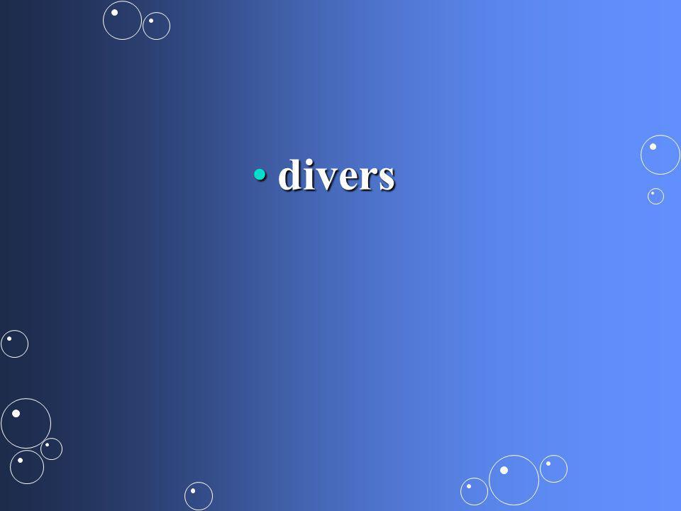 diversdivers
