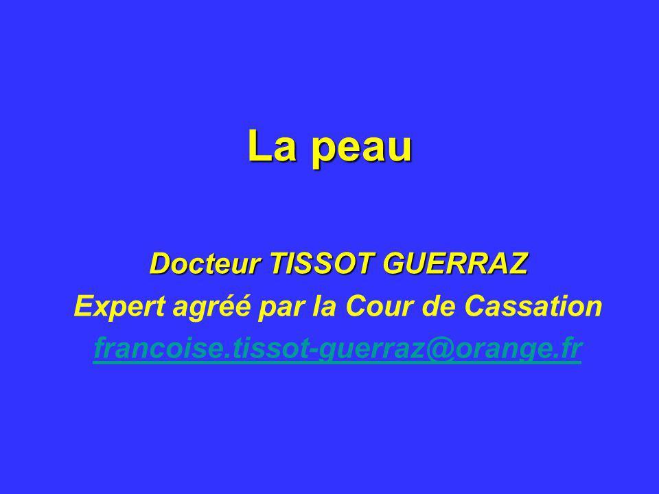 La peau Docteur TISSOT GUERRAZ Expert agréé par la Cour de Cassation francoise.tissot-guerraz@orange.fr