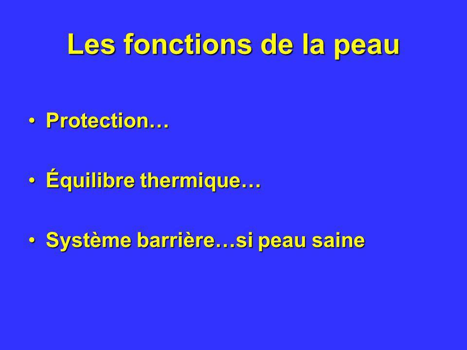 Les fonctions de la peau Protection…Protection… Équilibre thermique…Équilibre thermique… Système barrière…si peau saineSystème barrière…si peau saine
