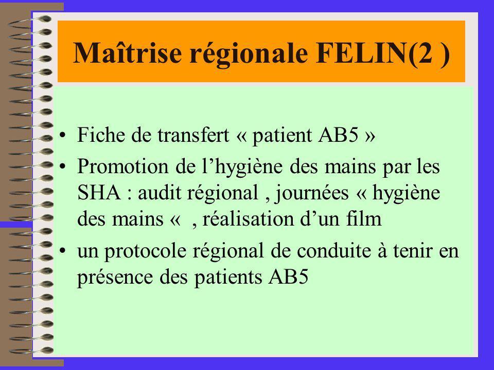 11 Maîtrise régionale FELIN(2 ) Fiche de transfert « patient AB5 » Promotion de lhygiène des mains par les SHA : audit régional, journées « hygiène des mains «, réalisation dun film un protocole régional de conduite à tenir en présence des patients AB5