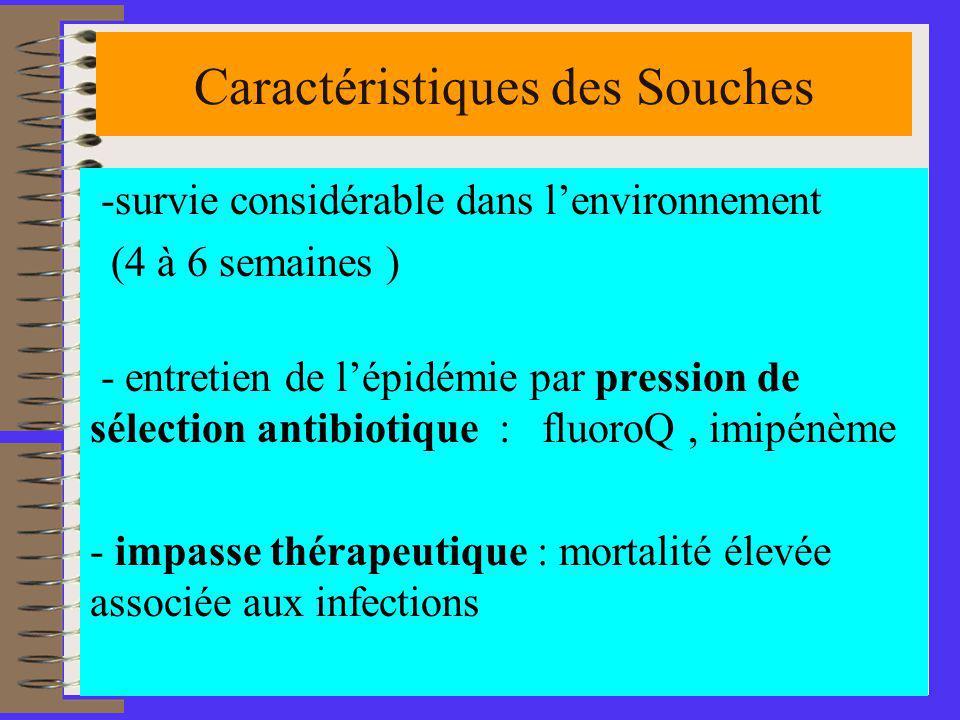 4 Caractéristiques des Souches -survie considérable dans lenvironnement (4 à 6 semaines ) - entretien de lépidémie par pression de sélection antibiotique : fluoroQ, imipénème - impasse thérapeutique : mortalité élevée associée aux infections