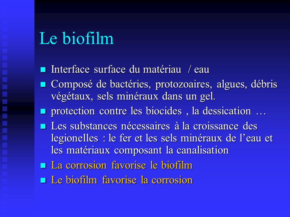 Le biofilm Interface surface du matériau / eau Interface surface du matériau / eau Composé de bactéries, protozoaires, algues, débris végétaux, sels m