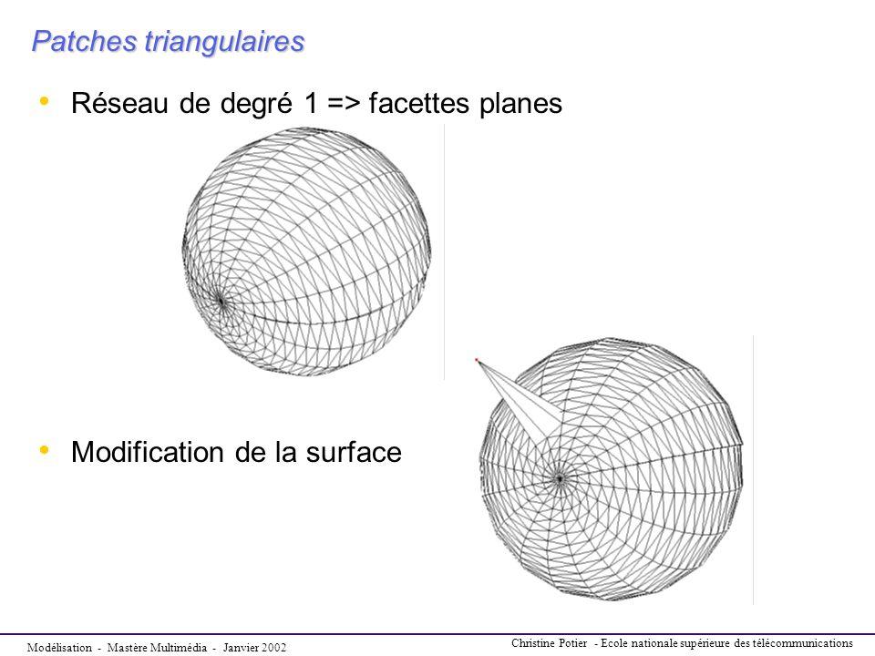 Modélisation - Mastère Multimédia - Janvier 2002 Christine Potier - Ecole nationale supérieure des télécommunications Patches triangulaires Réseau de