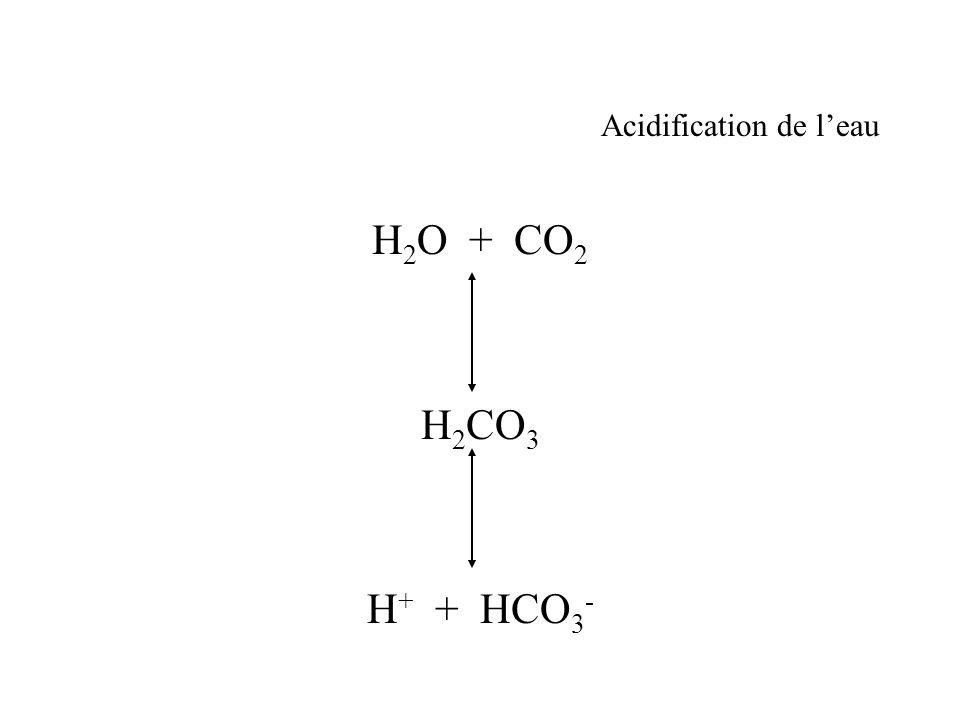 Acidification de leau H 2 O + CO 2 H 2 CO 3 H + + HCO 3 -