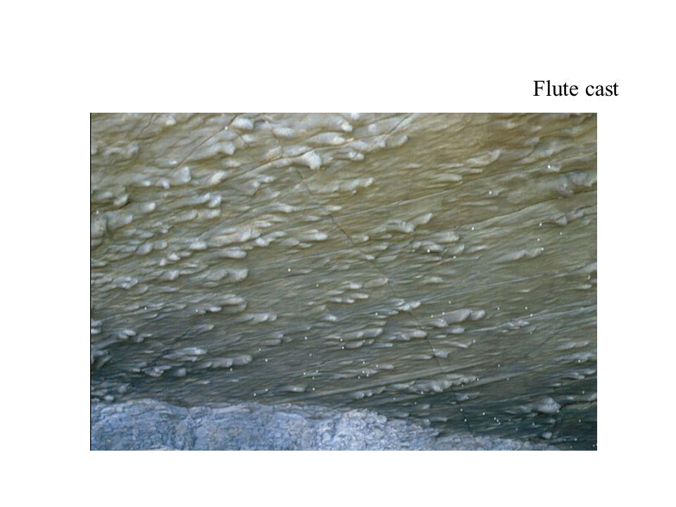 Flute cast