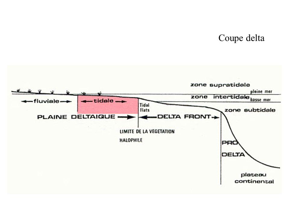 Coupe delta