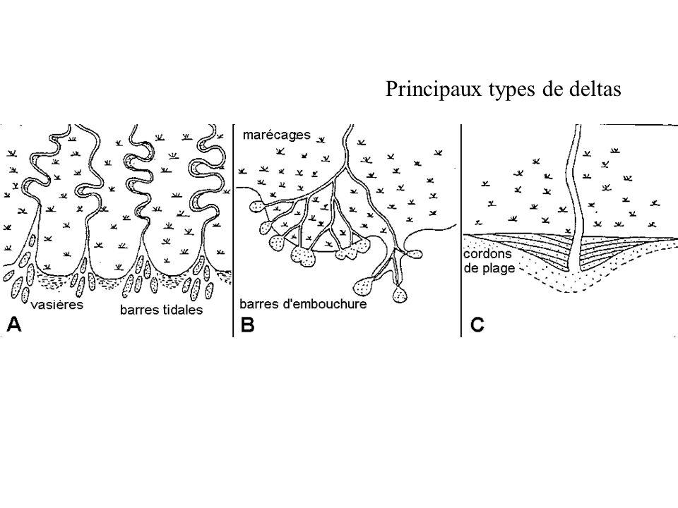 Principaux types de deltas