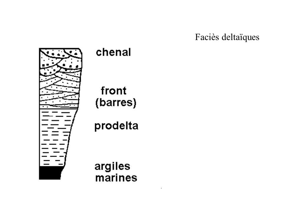 Faciès deltaïques