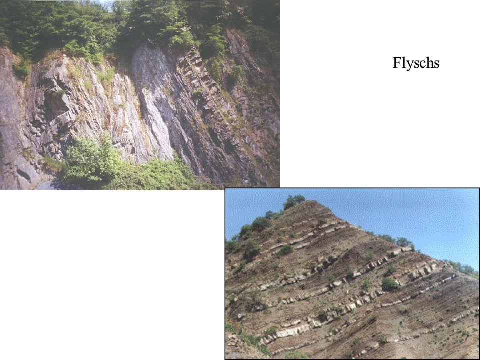 Flyschs