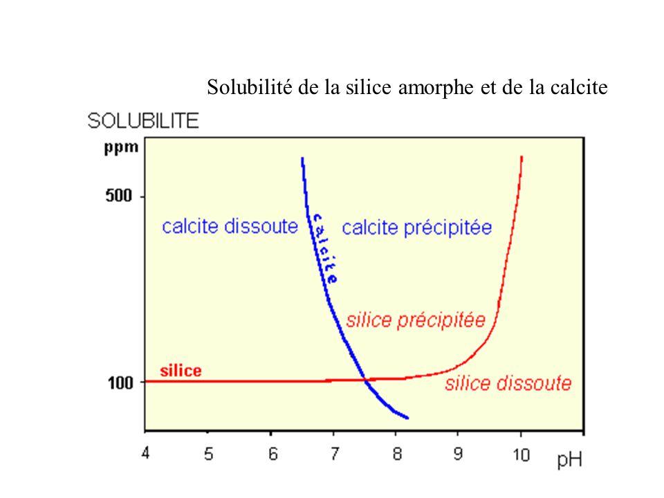 Solubilité de la silice amorphe et de la calcite