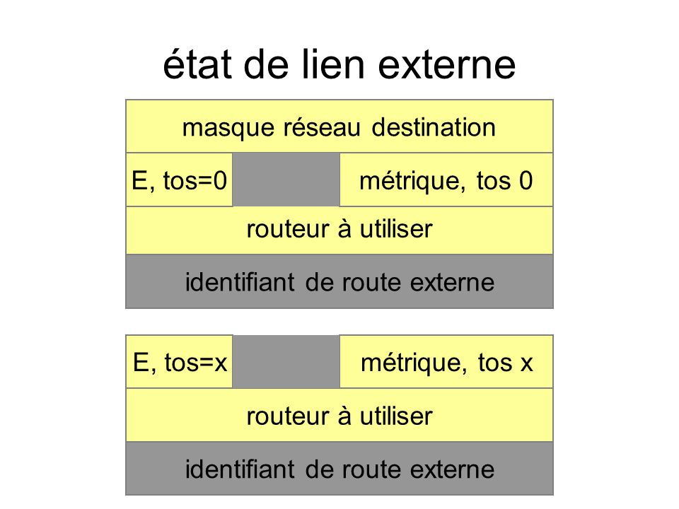 état de lien externe masque réseau destination routeur à utiliser identifiant de route externe métrique, tos 0E, tos=0 routeur à utiliser identifiant