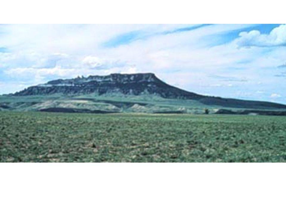 Square Butte Montana