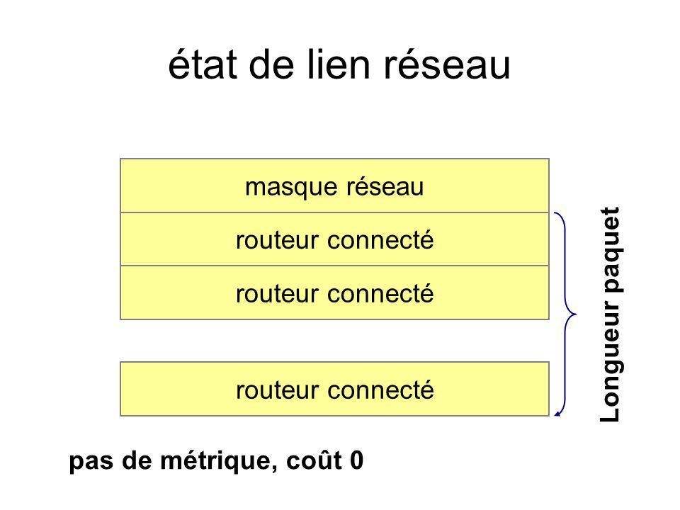 état de lien réseau masque réseau routeur connecté Longueur paquet pas de métrique, coût 0