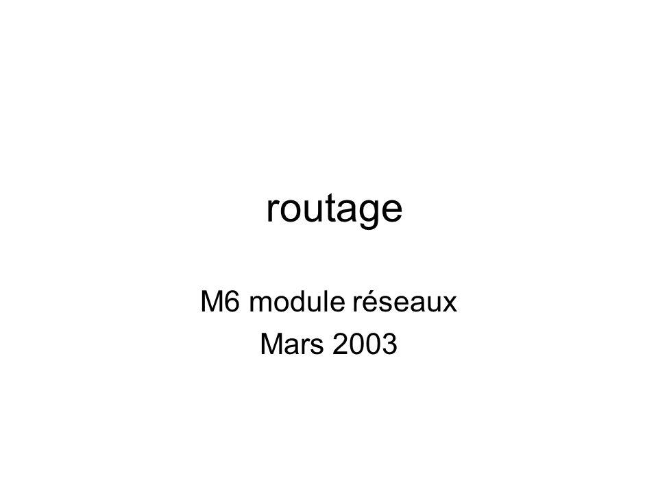 routage M6 module réseaux Mars 2003