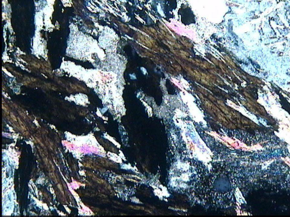 Chlorite ferrifère rétrograde LPA