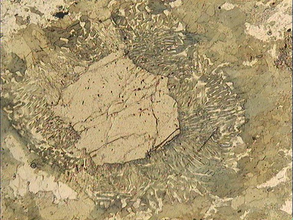 Structure kélyphitique dans une éclogite LPNA
