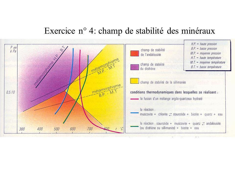 Exercice n° 4: champ de stabilité des minéraux