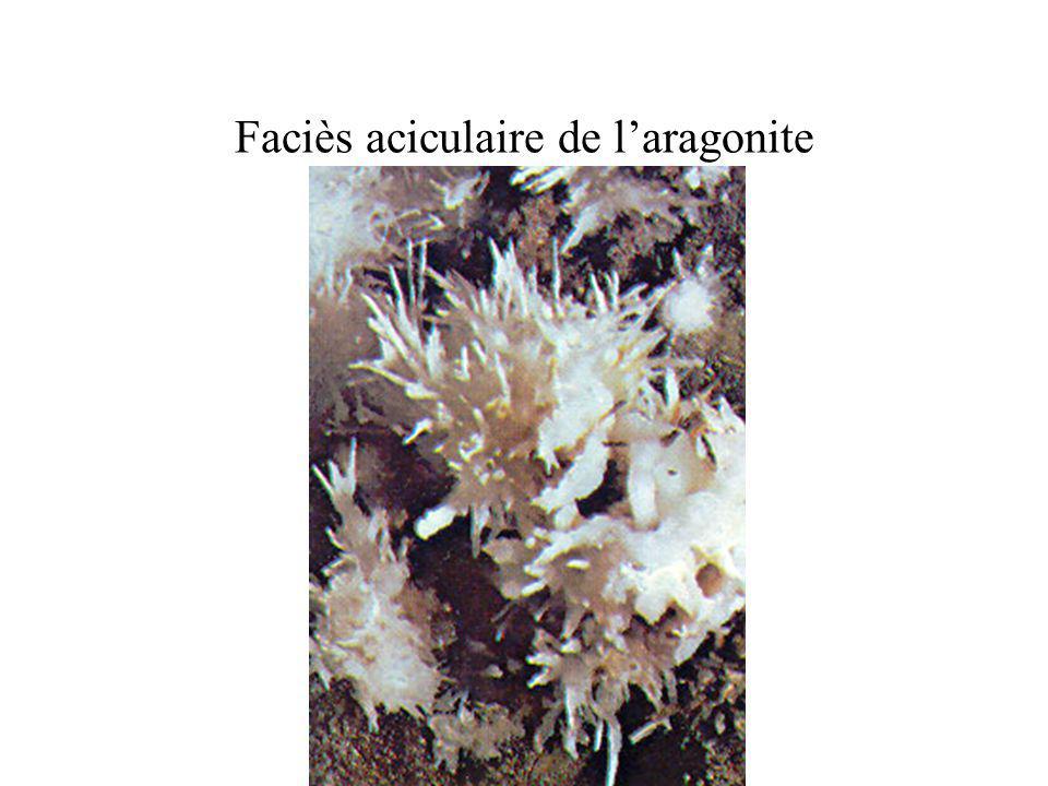 Faciès aciculaire de laragonite